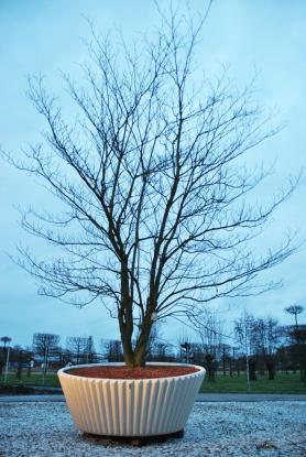 plantenbak, boombak Lena - Limited Edition tuin Van den Berk boomkwekerijen